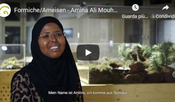 Formiche/Ameisen - Amina Ali Mouhamoud (Voltaire European Education Centre)